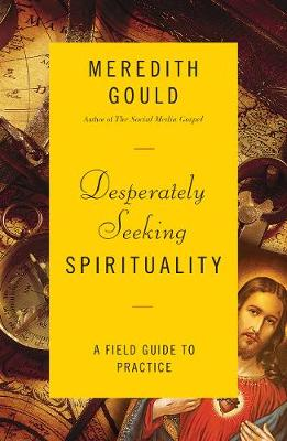 Desperately Seeking Spirituality by Meredith Gould