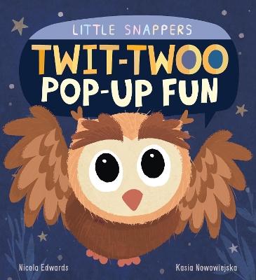 Twit-twoo Pop-up Fun by Nicola Edwards