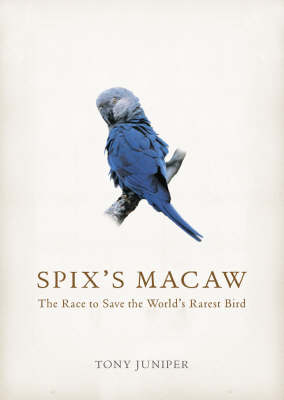 Spix's Macaw: The Race to Save the World's Rarest Bird by Tony Juniper