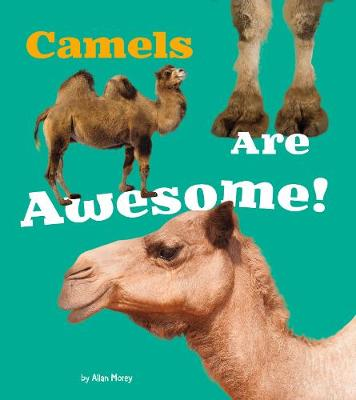 Camels Are Awesome! book