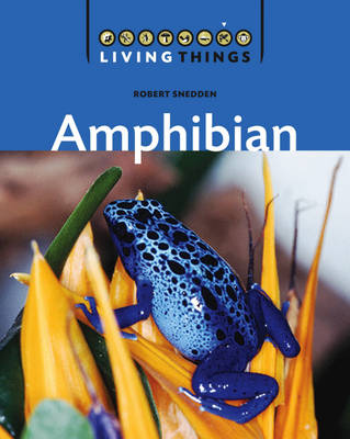 Amphibian by Robert Snedden