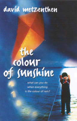 The Colour of Sunshine by David Metzenthen