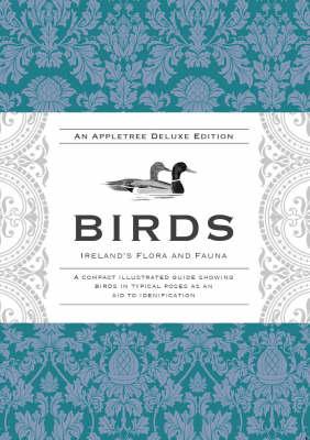 Birds by Gordon D'Arcy