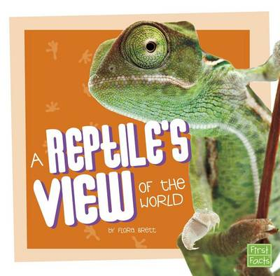 A Reptile's View of the World by Flora Brett