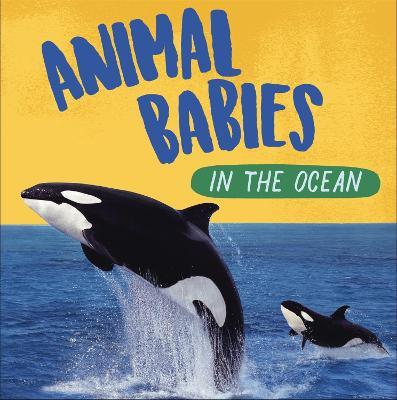 Animal Babies: In the Ocean book
