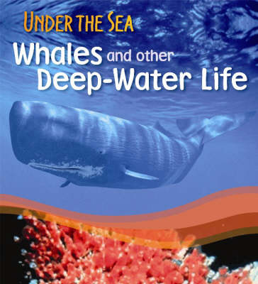 Whales and Other Deep-water Life by Sally Morgan