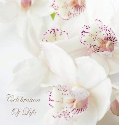 Celebration of Life, in Loving Memory Funeral Guest Book, Wake, Loss, Memorial Service, Love, Condolence Book, Funeral Home, Missing You, Church, Thoughts and in Memory Guest Book (Hardback) by Lollys Publishing
