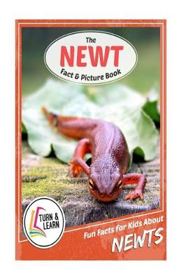 The Newt Fact and Picture Book by Gina McIntyre