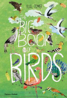 The Big Book of Birds book