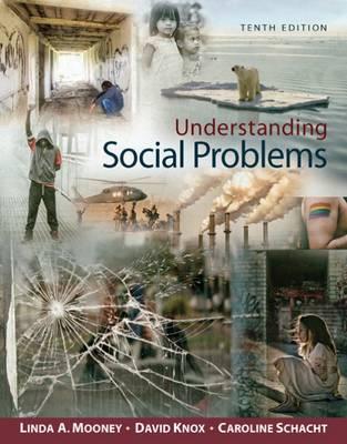 Understanding Social Problems book