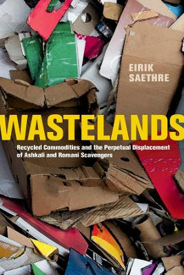 Wastelands: Recycled Commodities and the Perpetual Displacement of Ashkali and Romani Scavengers book