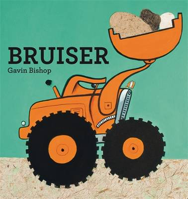 Bruiser book