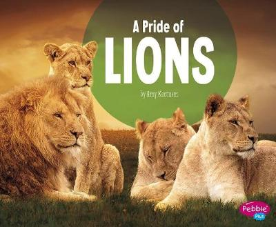 A Pride of Lions by Lucia Raatma
