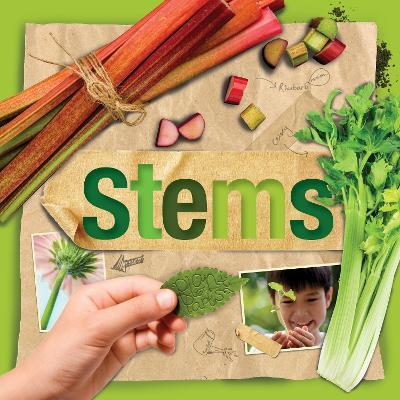 Stems book