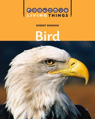 Bird by Robert Snedden