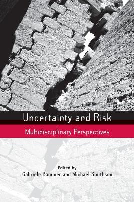 Uncertainty and Risk book