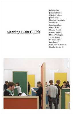 Meaning Liam Gillick book