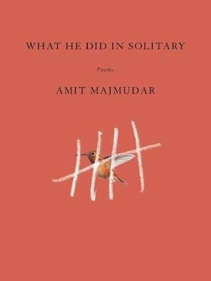 What He Did in Solitary book