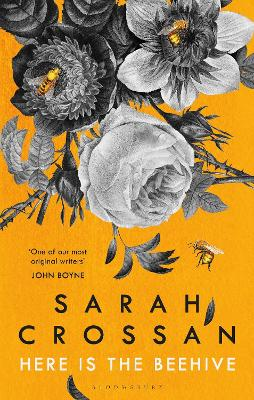 Here is the Beehive: Shortlisted for Popular Fiction Book of the Year in the AN Post Irish Book Awards by Sarah Crossan