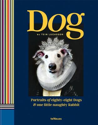 Dog: Portraits of Eighty-Eight Dogs and One Little Naughty Rabbit book