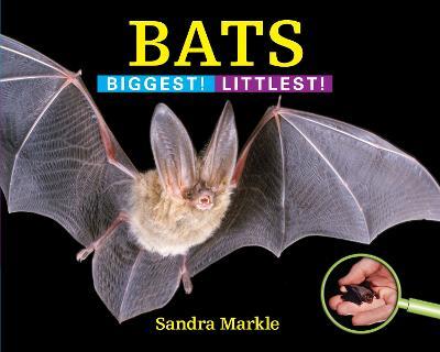 Bats by Sandra Markle