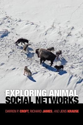Exploring Animal Social Networks book