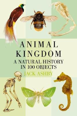 Animal Kingdom by Jack Ashby