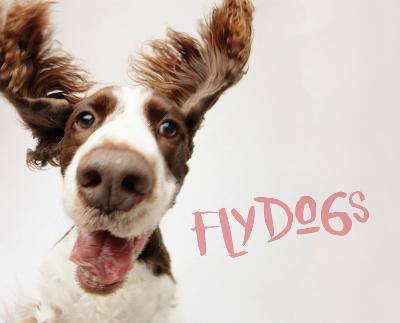 Flydogs by Todd R. Berger