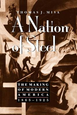 A Nation of Steel by Thomas J. Misa