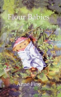 Flour Babies by Anne Fine