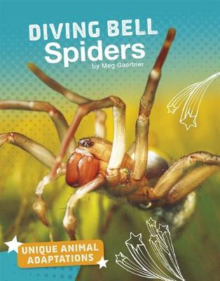 Diving Bell Spiders book