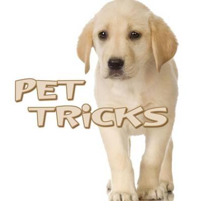 Pet Tricks by Meg Greve