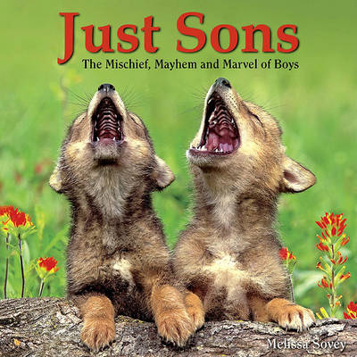 Just Sons: The Mischief, Mayhem and Marvel of Boys by Kuchler Bonnie Louise