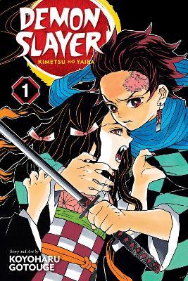 Demon Slayer: Kimetsu no Yaiba, Vol. 1 book