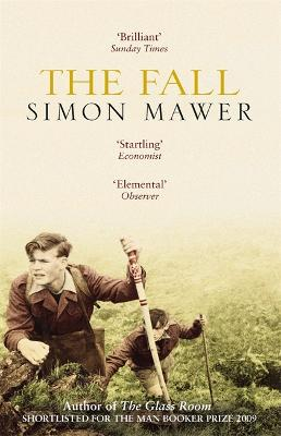 Fall by Simon Mawer