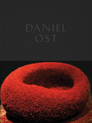 Daniel Ost by Paul Geerts