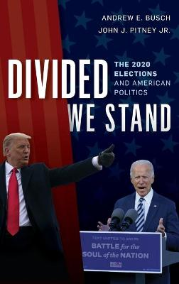 Divided We Stand: The 2020 Elections and American Politics book