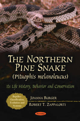 Northern Pine Snake (Pituophis Melanoleucus) by Joanna Burger