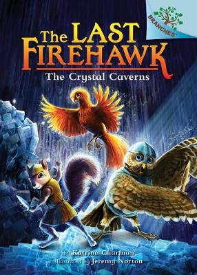The Crystal Caverns by Katrina Charman