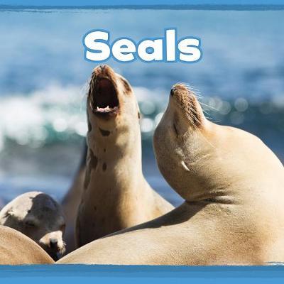 Seals by Kathryn Clay