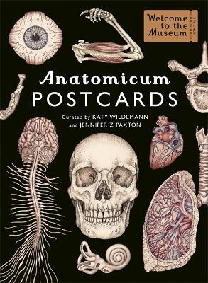Anatomicum Postcard Box by Katy Wiedemann