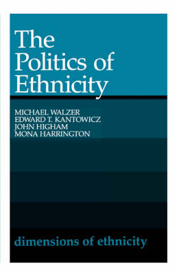 Politics of Ethnicity book