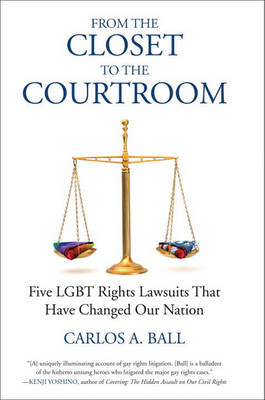 From the Closet to the Courtroom book