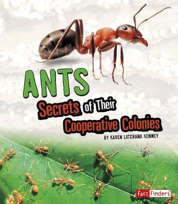 Ants: Secrets of Their Cooperative Colonies: Secrets of Their Cooperative Colonies by Karen Latchana Kenney