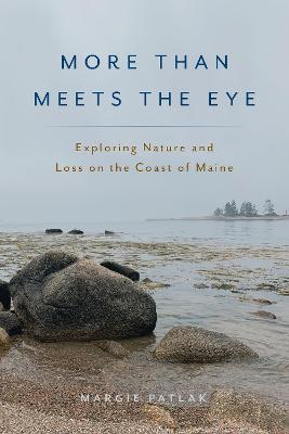 More Than Meets the Eye: Exploring Nature and Loss on the Coast of Maine book