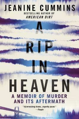 A Rip in Heaven by Jeanine Cummins