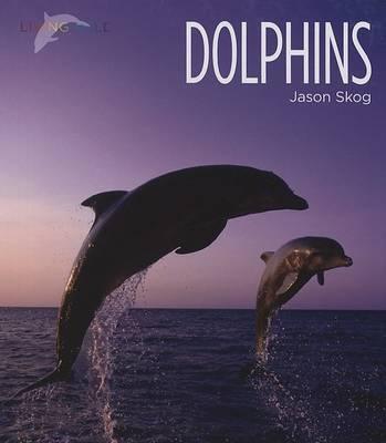 Dolphins by Jason Skog