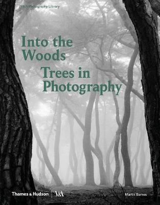 Into the Woods: Trees in Photography by Martin Barnes