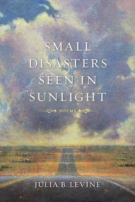 Small Disasters Seen in Sunlight by Julia B Levine