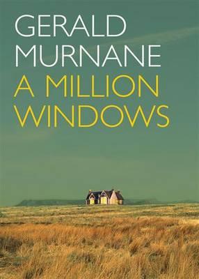 Million Windows book